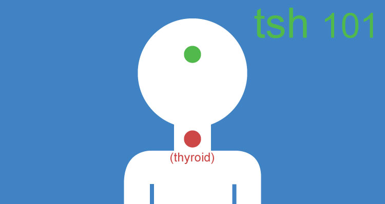 TSH Test | Overview Of Thyroid Stimulating Hormone To Test Your Thyroid